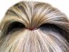 hair2-stor